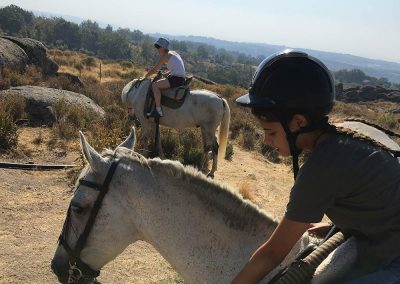 caballo-16