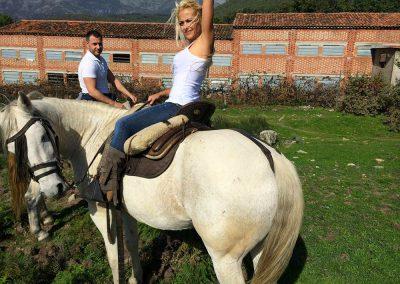 caballo-4