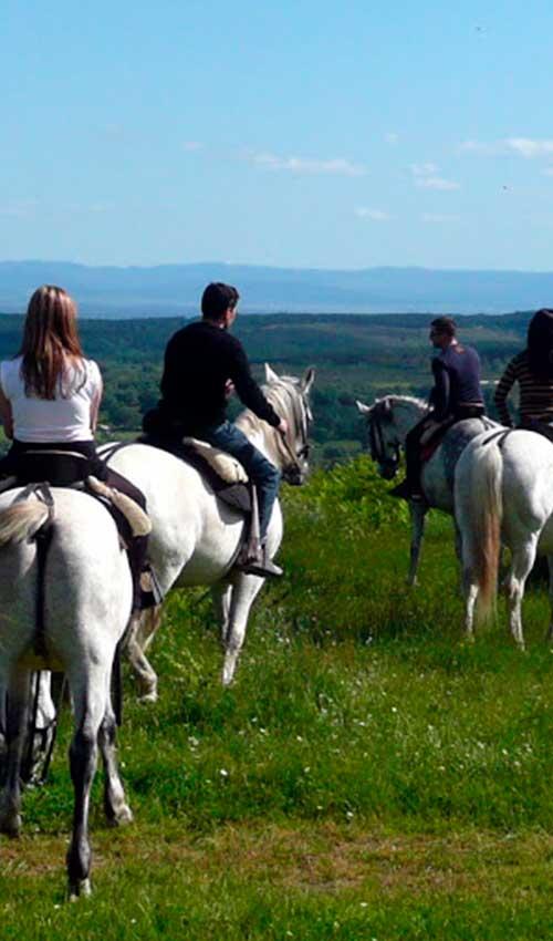 ruta-caballo-1