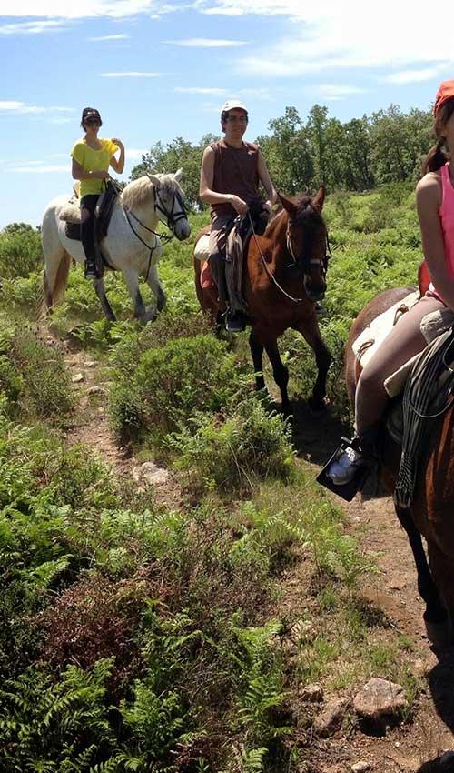 ruta-caballo-5