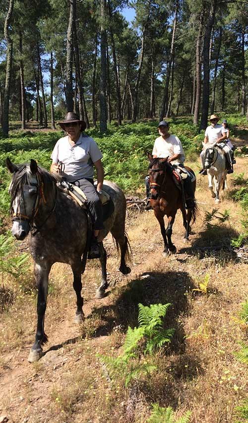 ruta-caballo-6