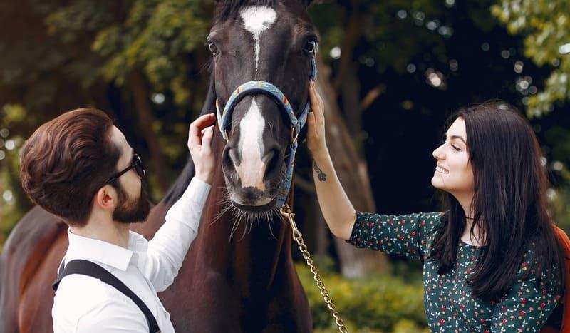 Celebra el día de San Valentín con un paseo a caballo